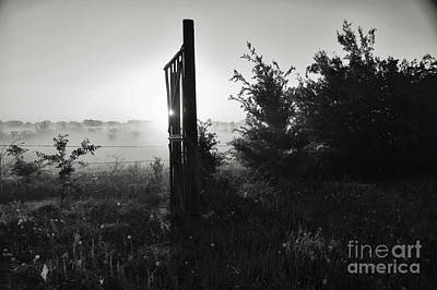 Photograph - The Gate by Diana Mary Sharpton