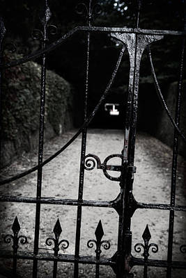 Photograph - The Gate To Petworth by Michael Hope