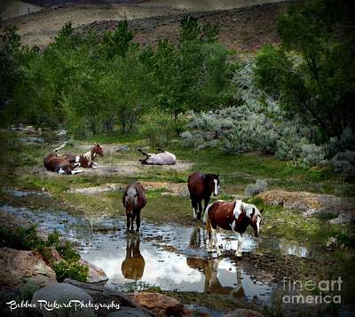 Photograph - The Gathering  by Bobbee Rickard