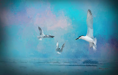 Tern Photograph - The Gathering by Marvin Spates