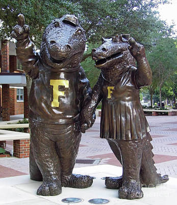 Photograph - The Gators by D Hackett