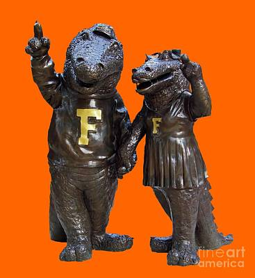 Photograph - The Gators Transparent For T Shirts by D Hackett