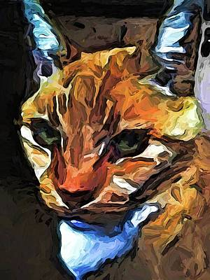 Digital Art - The Gaze Of The Gold Cat by Jackie VanO