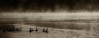 Mist Photograph - The Geese On Old Forge Pond by David Patterson
