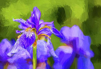 Fleur De Lis Photograph - The Gentleness Of Spring 2 - Paint by Steve Harrington