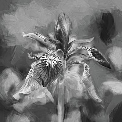 Fleur De Lis Photograph - The Gentleness Of Spring 3 - Paint Bw by Steve Harrington