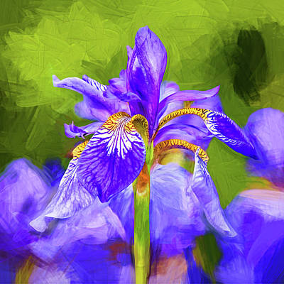 Fleur De Lis Photograph - The Gentleness Of Spring 3 - Paint by Steve Harrington