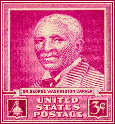 George Washington Carver Painting - The George Washington Carver Stamp by Lanjee Chee