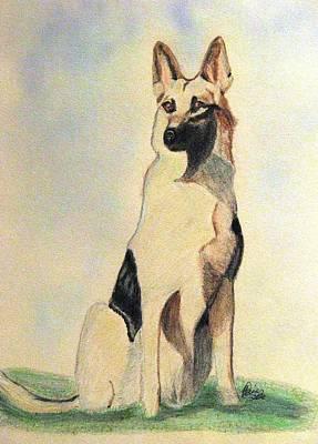 Herding Dog Drawing - The German Shepherd Friend For Life by Angela Davies