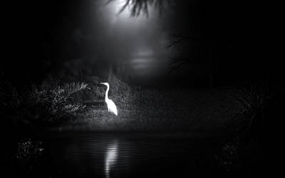 Photograph - The Ghost On The Shore by Mark Andrew Thomas