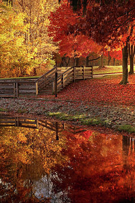 Photograph - The Glory Of Autumn by Rob Blair