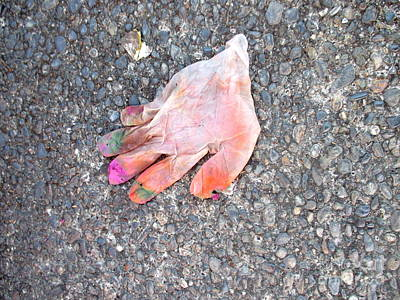 Photograph - The Glove by Marie Neder