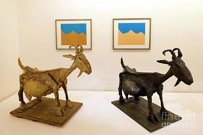 The Goat, La Chevre, 1950, Statues Interior Of Musee Picasso, Pa Art Print