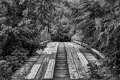 Photograph - The Goatman's Bridge by JC Findley