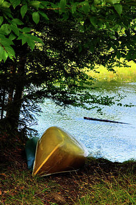 Photograph - The Golden Canoe by David Patterson