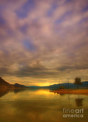 Photograph - The Golden Glow Of Morning by Tara Turner