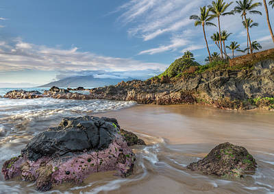Photograph - The Golden Hour In Paradise by Ian Sempowski