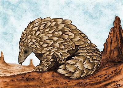 Pangolin Drawing - The Golden Pangolin by Philip Harvey