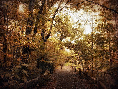 Autumn Foliage Photograph - The Golden Path by Jessica Jenney