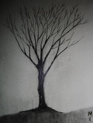 Tree Drawing - The Golden Years by Nick Young