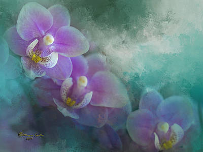 Phalaenopsis Photograph - The Good Showing by Marvin Spates