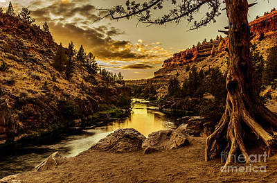 Nature Photograph - The Gorge by Adam Reisman