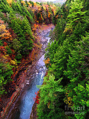 Photograph - The Gorge by Mim White