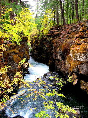 Serenity Oregon Painting - The Gorge by Shasta Eone