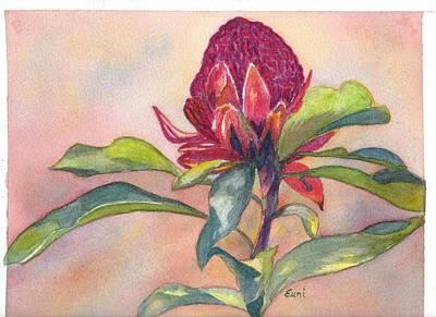 Australian Native Painting - The Gorgeous Waratah by Eunice Warfel