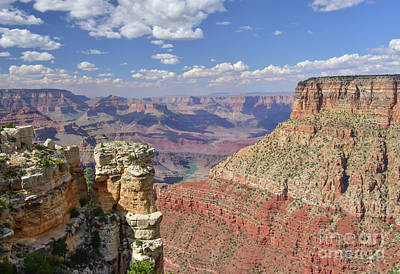 Photograph - The Grand Canyon by Debbie Green