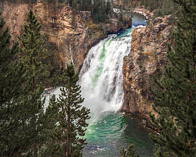 Photograph - The Grand Canyon Of Yellowstone Upper Falls by Nicholas Blackwell