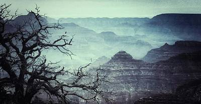 Photograph - The Grand Canyon  by Snow White