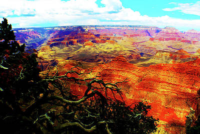 Photograph - The Grand Grand Canyon by Susan Vineyard