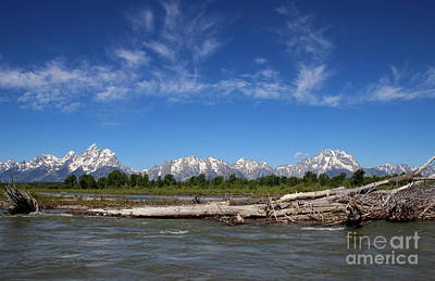 Photograph - The Grand Tetons  by Lennie Malvone