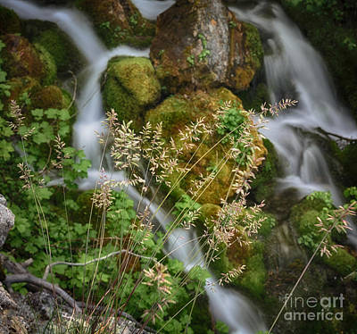 Modern Kitchen - The Grass Above the Falls HDR by Mitch Johanson