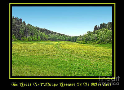 Photograph - The Grass Isn't Always Greener On The Other Side by Vivian Martin