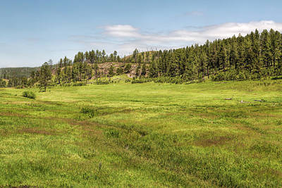 Photograph - The Grasslands Of Custer State Park by John M Bailey