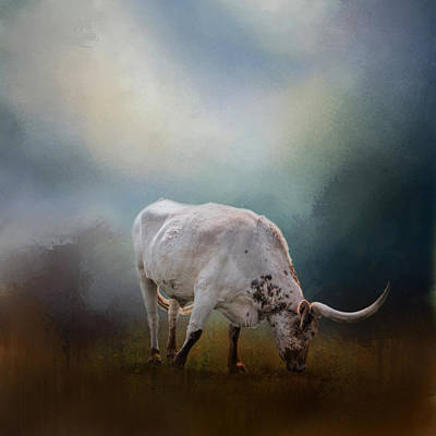 The Grazing Texas Longhorn Art Print