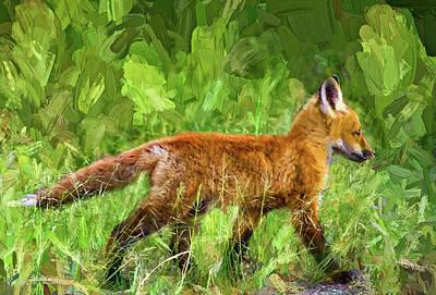 Fox Photograph - The Great Adventure 2 - Impasto by Steve Harrington