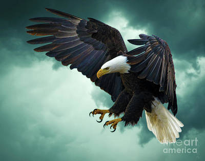 Freedom Mixed Media - The Great Bald Eagle by KaFra Art