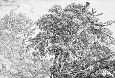 Relief - The Great Beech by Jacob van Ruisdael