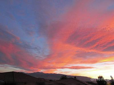 Photograph - The Great Bird Sunset by Phyllis Kaltenbach