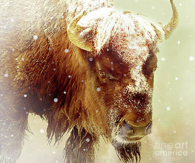 Bison Mixed Media - The Great Bison by KaFra Art