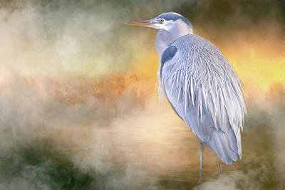 Photograph - The Great Blue Heron by Jacqui Boonstra
