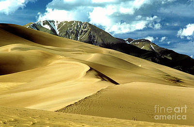 Photograph - The Great Colorado Sand Dunes Color Print by James BO  Insogna