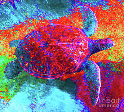 Photograph - The Great Sea Turtle In Abstract by D Davila