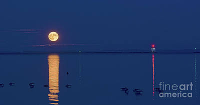 James Brown Photograph - The Great Supermoon by James Brown