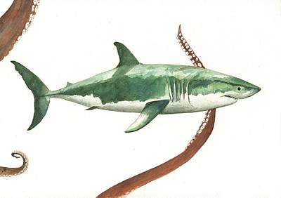 Reef Shark Wall Art - Painting - The Great White Shark And The Octopus by Juan Bosco