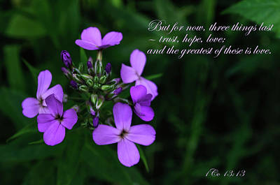 Photograph - The Greatest Is Love by Tikvah's Hope
