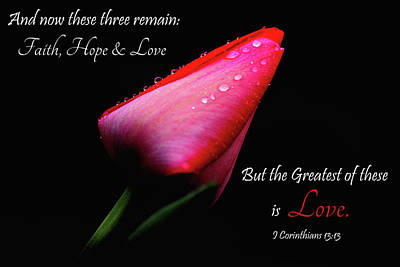 Photograph - The Greatest Of These Is Love by Trina Ansel